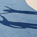 Shadow Friends by Richard Bryce and Family