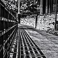 Shadow Walk by Tom Gort