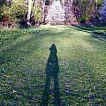 Shadows Long by Judy Via-Wolff