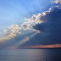Shafts Of Sunlight by Kristin Elmquist