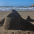 Shark Sand Sculpture by Garry Gay