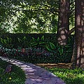 Shaw's Gardens Stone Pathway by Michael Frank