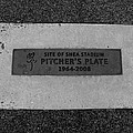 Shea Stadium Pitchers Mound In Black And White by Rob Hans