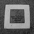 Shea Stadium Third Base In Black And White by Rob Hans
