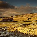 Shed In The Yorkshire Dales, England by John Short