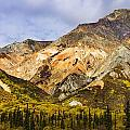 Sheep Mountain Along Glenn Highway by Yves Marcoux
