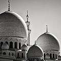 Sheikh Zayed Mosque by Daniel Nahabedian