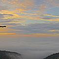Shenandoah Sunrise - 4342 by Chuck Smith