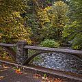 Sheppards Glen Colors by Mike Reid