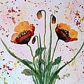 Shining Red Poppies Watercolor Painting by Georgeta  Blanaru