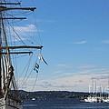 Ships In Oslo Harbor by Carol Groenen
