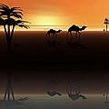 Ships Of The Desert by David Dehner
