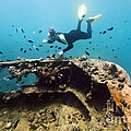 Shipwreck And Diver by MotHaiBaPhoto Prints
