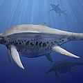 Shonisaurus Popularis Swimming by Sergey Krasovskiy
