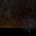 Shooting Stars by George Buxbaum