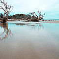 Shoreline - Driftwood Beach Jekyll Island by Geoff Powell