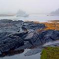 Shorelines Bluerocks Lunenburg Nova Scotia by William OBrien