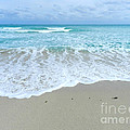 Shores Of  Miamibeach by Tammy Chesney