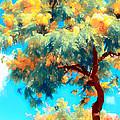 Shower Trees by Joe Carini