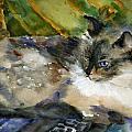 Siamese Basking by Miriam Schulman