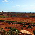 Sicilian Landscape by Madeline Ellis