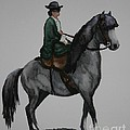 Sidesaddle by Susan Herber
