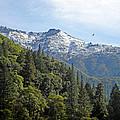 Sierra First Snow by Frank Wilson