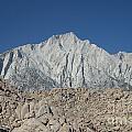 Sierra Nevada by Cassie Marie Photography