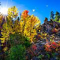 Sierra Nevada Fall Colors Lassen County California by Scott McGuire