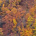 Sierra Nevada National Park by Guido Montanes Castillo
