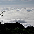 Silhouette Photographer With Group Of Clouds And Fogs by Nawarat Namphon