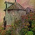 Silo In Overgrowth by Deborah Benoit
