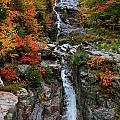 Silver Cascades Surrounded By Colors by Lloyd Alexander