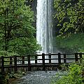 Silver Falls 2 In Oregon by Mike Nellums