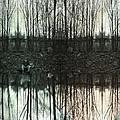 Silver Lake by Janet Kearns