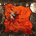 Silver Metal Flower On Orange by Connie Beattie