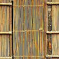 Simple Bamboo Door by Yali Shi