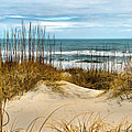 Simply The Beach by Nadine Lewis