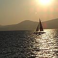 Single Sailboat by Silvie Kendall