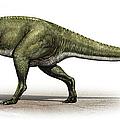 Sinraptor Dongi, A Prehistoric Era by Sergey Krasovskiy
