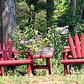 Sit For Awhile by Living Color Photography Lorraine Lynch