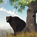Sitting Bear by Daniel Eskridge