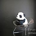 Sitting Meditation. Floyd From Travelling Pandas Series. by Ausra Huntington nee Paulauskaite