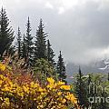 Skagway Alaska 2 by Pamela Walrath
