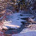 Skalkaho Creek Serene