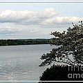 Skaneateles Lake In Ny Finger Lakes Water Color Effect by Rose Santuci-Sofranko