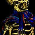 Skeleton Fashion Victim by Tylir Wisdom