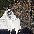 Skeleton Ghost by Derek Holzapfel