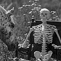 Skeleton In My Closet by Betsy Knapp