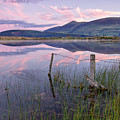 Skiddaw by Phil Buckle